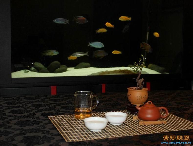 大家请喝茶,请喝茶,Qq辛苦了请喝茶表情(第4页)_点力 ...