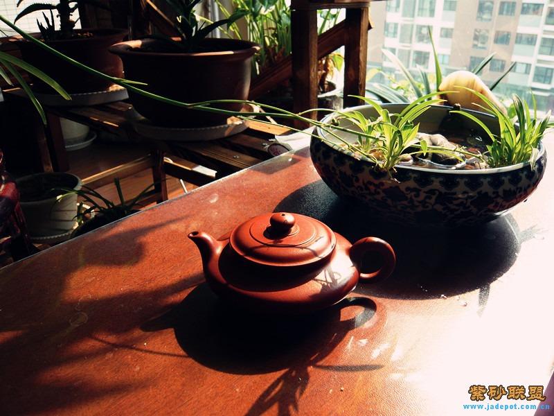 午后,暖阳,下午茶
