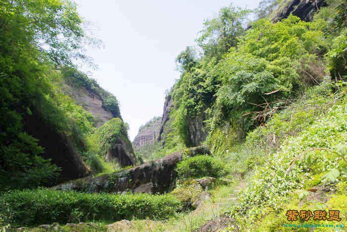武夷山风景区丹霞地貌是怎样形成的多个单斜山脊相邻,称为单斜峰群.